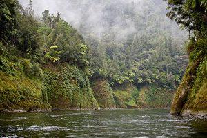 Whanganui River in Neuseeland