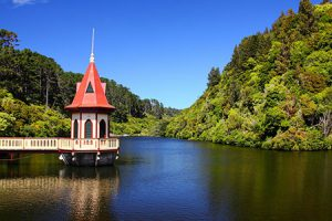 Zealandia Sanctuary in Wellington